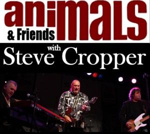 animals-stevecropper